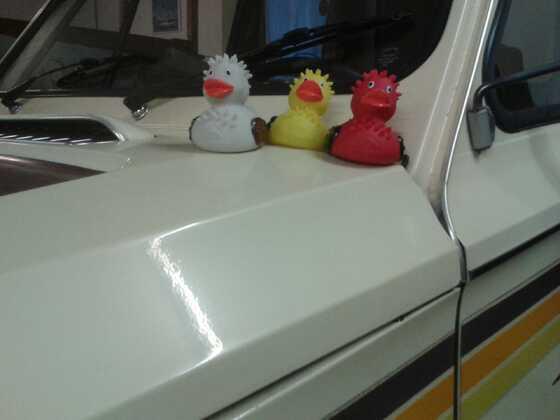 ...die drei Abenteurer wieder unterwegs....